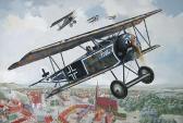 Roden Fokker D.VI