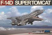 Avant Garde Grumman F-14D Super Tomcat